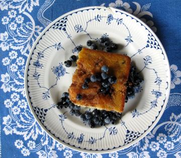 Blueberry Snap cut web