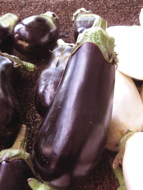 I love eggplant!