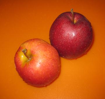 applesforsaladweb